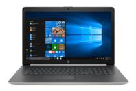 HP NOTEBOOK 17.3inch NATURAL SILVER - RYZEN5 3500U - 8GB - 128GB + 1TB
