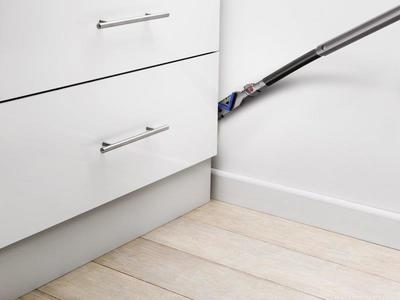 Dyson cinetic big ball absolute %2815%29